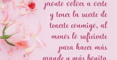 Cartas de amor para tu amiga que está lejos