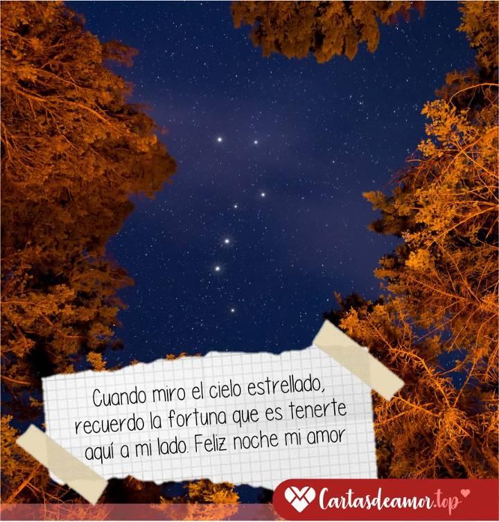 Frases De Buenas Noches Para Tu Amor Para Enamorar